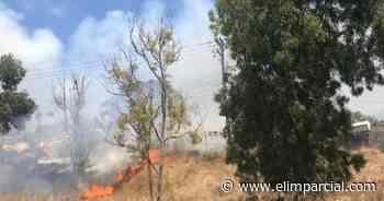 Rosarito combatirá incendios forestales con 30 nuevos brigadistas - FRONTERA.INFO