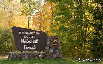 Group campsites remain closed at Chequamegon-Nicolet National Forest - WAOW