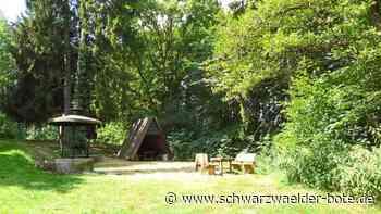 Sulz a. N.: Zum wiederholten Mal Vandalismus beim Pfingstbrunnen - Sulz a. N. - Schwarzwälder Bote