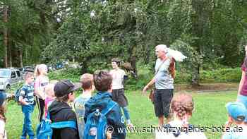 Sulz a. N.: Kinder gehen mit dem Jäger auf den Hochsitz - Sulz a. N. - Schwarzwälder Bote