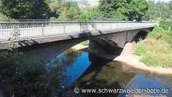 Sulz a. N.: Stadt beteiligt sich am Brückenbau - Sulz a. N. - Schwarzwälder Bote
