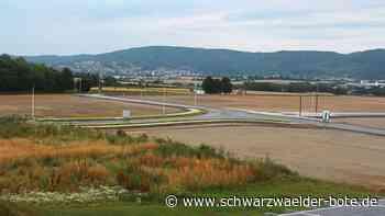 Sulz a. N.: Straße nach Helmut Sülzle benannt - Sulz a. N. - Schwarzwälder Bote