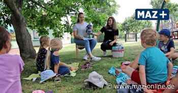 Junge Lesepaten erstmals vor Kita-Kindern Gransee - Märkische Allgemeine Zeitung