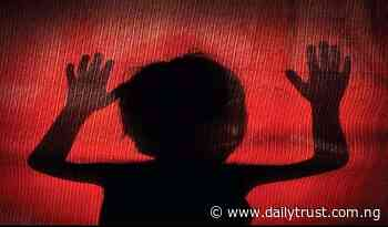 Police arrest teenager for raping 2-year-old girl in Yola - Daily Trust