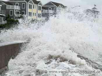 Hafengrundstück geflutet nach Rückstau