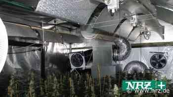 Cannabis-Plantage bei Stallbrand in Nettetal entdeckt - NRZ