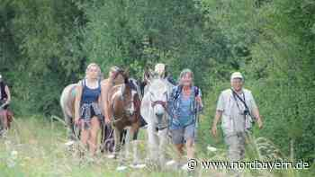 Biotop in Niederndorf: Wo Pferde und Esel urlauben - Nordbayern.de