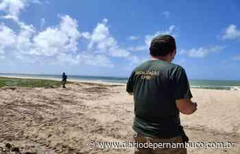 CPRH multa Prefeitura de Ipojuca em R$ 5 mil por obra na praia de Maracaípe - Diário de Pernambuco