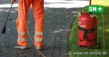 Stadthagen: Gasflasche und Hecke fangen Feuer bei Unkrautvernichtung - Schaumburger Nachrichten