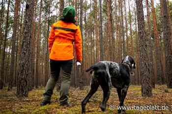 Zusätzliches Forstpersonal im Landkreis Stade gefordert - TAGEBLATT - Lokalnachrichten aus Harsefeld. - Tageblatt-online