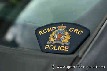 Charges laid after Columbia Valley woman's dog dragged by stolen vehicle - Grand Forks Gazette