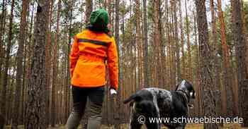 Mehr Personal für den Waldumbau - Schwäbische