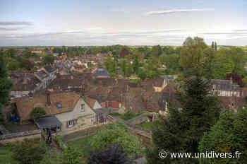 Visite commentée de Chaumont-en-Vexin Cour de la Mairie samedi 19 septembre 2020 - Unidivers