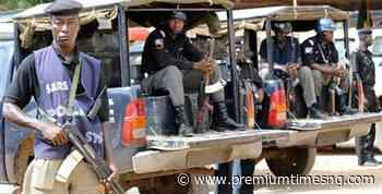 Police arrest 27 rape suspects in Bauchi - Premium Times