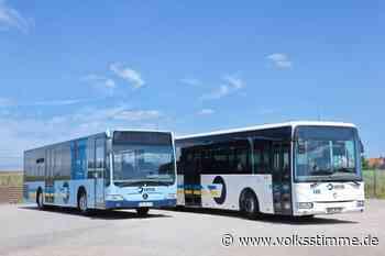 Busverkehr: Haubold feiert einen Teilerfolg - Volksstimme