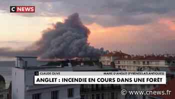 Incendie à Anglet : «Le feu a dû brûler une cinquantaine d'hectares», annonce le maire, Claude Olive - CNEWS