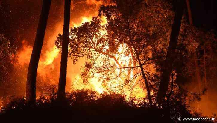Feu de forêt à Anglet : une centaine d'habitants évacués, plus de 100 hectares détruits - LaDepeche.fr