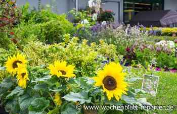 Landfuxx in Weilerbach bietet umfangreiches Sortiment: Alles für Garten, Haus und Hof - Weilerbach - Wochenblatt-Reporter