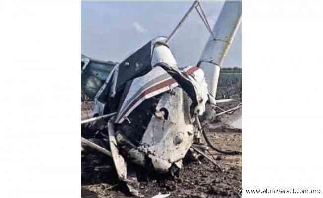Avioneta cae en cultivos de agave en Romita, Guanajuato | El Universal - El Universal