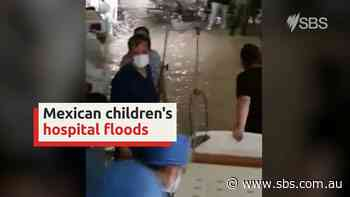 Mexican children's hospital flooded in aftermath of Tropical Storm Hanna - SBS News