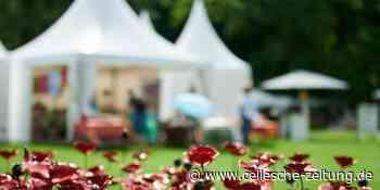 Verlosung Gartenfestival Herrenhausen Hannover Cellesche Zeitung Celle - Cellesche Zeitung