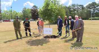Ontario government contributes funding for Highway of Heroes tree-planting campaign