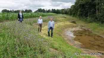 Renaturierung in Brockhausen: Warum sich der Kanal am Rabber Kirchweg breitmachen darf - noz.de - Neue Osnabrücker Zeitung