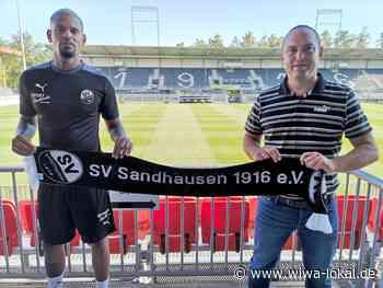 Angreifer Daniel Keita-Ruel wechselt zum SV Sandhausen - WiWa-Lokal - Wiesloch, Walldorf, Rauenberg und Dielheim - www.wiwa-lokal.de