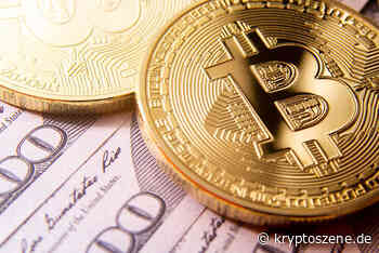 Bitcoin Cash Kurs Prognose: BCH/USD klettert um 26,5 Prozent - 300 Dollar-Marke bald erreicht - Kryptoszene.de - Kryptoszene.de