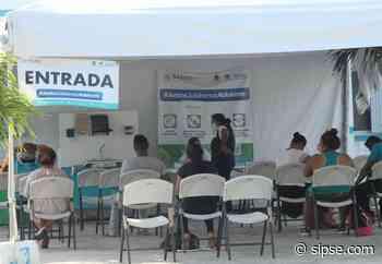 Quintana Roo entre las 10 entidades con más casos de Dengue en el país - sipse.com