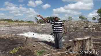 Campesinos en Chetumal, afectados por recortes presupuestales - PorEsto