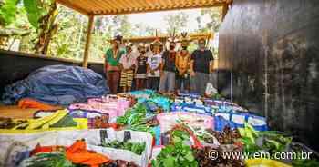 Campanha arrecada doações para hortas comunitárias em Minas - Estado de Minas