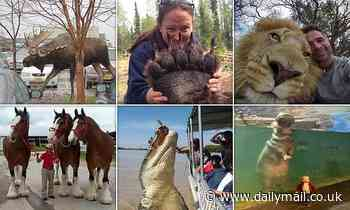 Stunning photos show the incredible true size of animals - Daily Mail