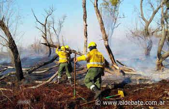 ENRIQUE SIERRA: Un conocedor del Delta del Río Paraná, describe la problemática de la sequía y los incendios insulares - El Debate