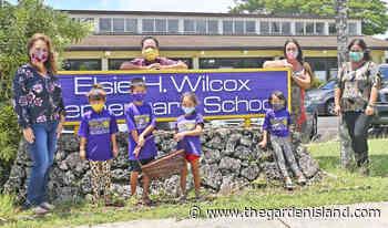 State Farm supplied Wilcox Elementary with masks - Thegardenisland.com