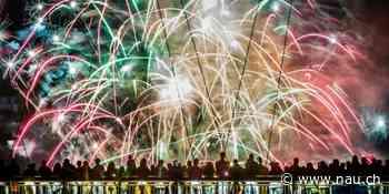 Feuerwerk ohne Knalleffekt – den Tieren zuliebe - Nau.ch
