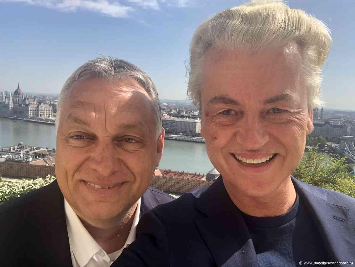 Kijk dan: hypocriete Geert Wilders pakt graaiend Italië aan, maar laat zich fêteren door Hongaarse graaier Orbàn - De Dagelijkse Standaard