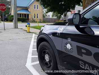 Saugeen Shores police nab suspect in Port Elgin crimes - Owen Sound Sun Times