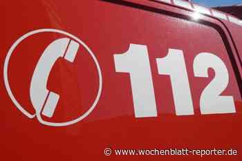 160 Heuballen bei Bruchmühlbach-Miesau verbrannt: Schaden in fünfstelliger Höhe - Wochenblatt-Reporter