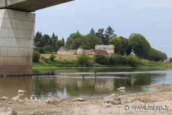 À Gien comme ailleurs dans le Giennois ou le Sullias, beaucoup bravent l'interdit en piquant une tête dans la Loire - La République du Centre