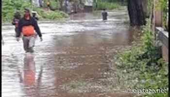 Cojedes | Al menos 13 vivienda se inundaron en comunidad de Tinaquillo - El Pitazo