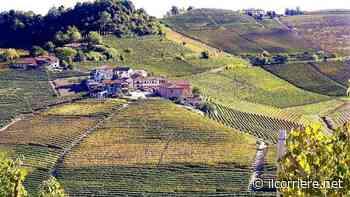 Festeggiamenti patronali a San Donato di Mango - https://ilcorriere.net/