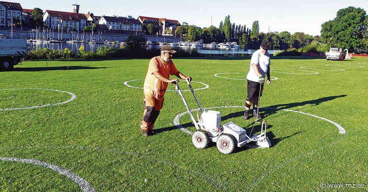 Heidelberg:  Ansturm auf die Neckarwiese erwartet - Stadt zieht wieder weiße Kreise