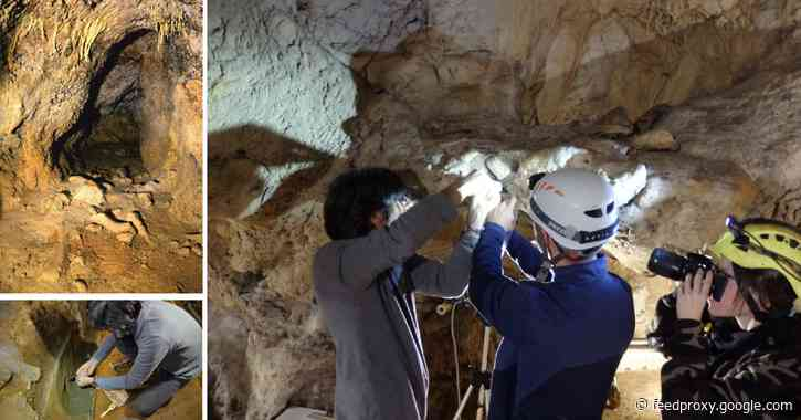 Italy's Neanderthal caves reveal fluctuations in Mediterranean sea level