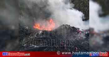 Ocasionan incendio tras quemar basura en Altamira - Hoy Tamaulipas