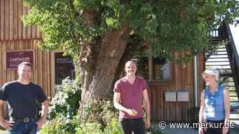 Garten für alte Obstsorten gesucht - Merkur.de