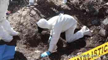 Identifican a 62 víctimas halladas en fosas de Guadalajara - Periódico Zócalo