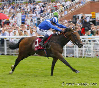 Placepot Pointers: The Tote's suggested perm for Goodwood on Friday - Racing TV