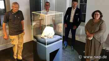 Meteorit in Blaubeuren: Wann und wo wird der Meteorit zu sehen sein? Alle Infos zur Ausstellung im Urgeschichtlichen Museum - SWP
