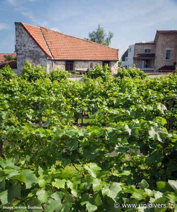 Visite des vignes et de la grange de Clamart La grange-musée Franquet,vigne municipale et cave samedi 19 septembre 2020 - Unidivers